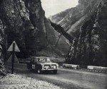 no321-taylor-melia- Cortina